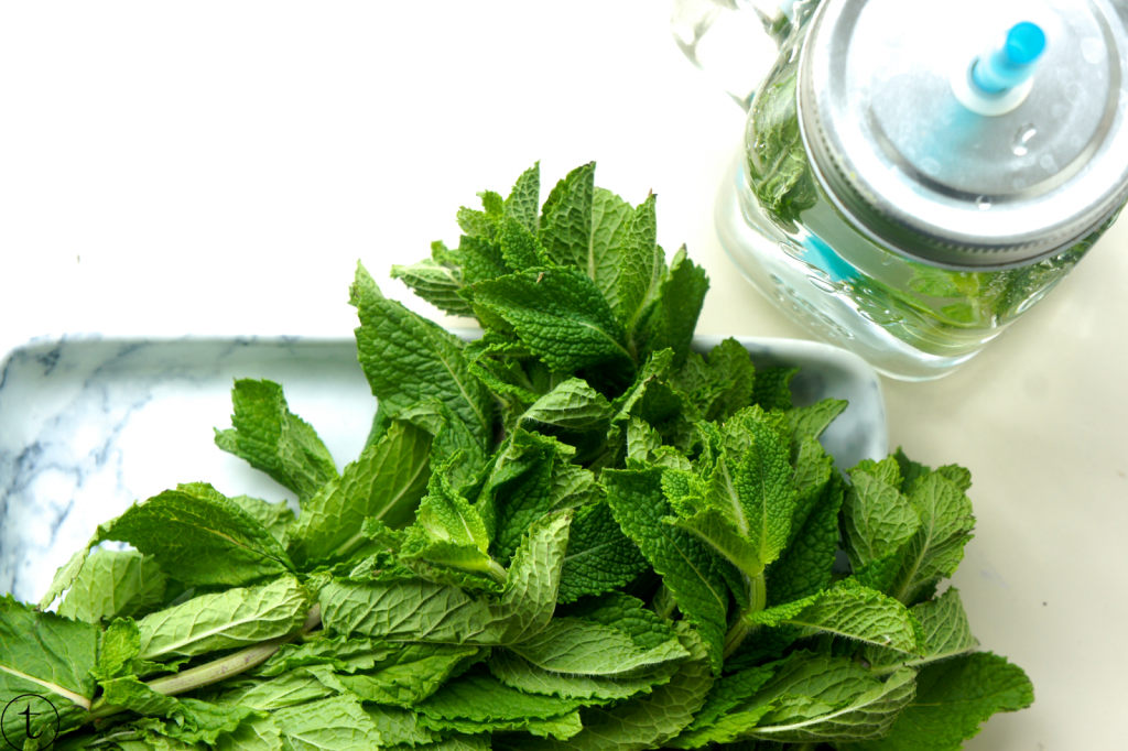 mint leaves for infused water