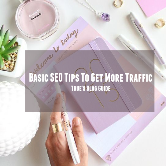 basic seo tips to get more traffic to your blog true's blog guide