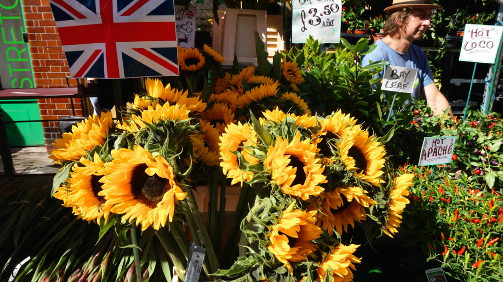 columbia road flower market in london sunflowers